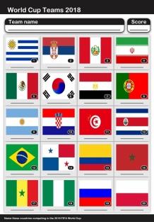 pr1834worldcupflags2018